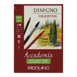 Blocco Disegno Accademia 30...