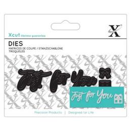 Mini Sentiment Die (3pcs) - Just For You XCU 504036